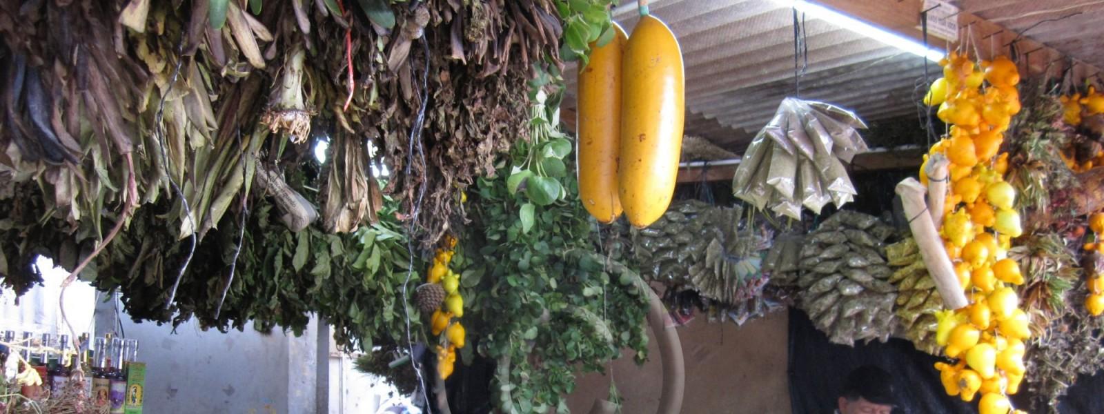 c_marche-herbes-medicinales-chiclayo-f-canard